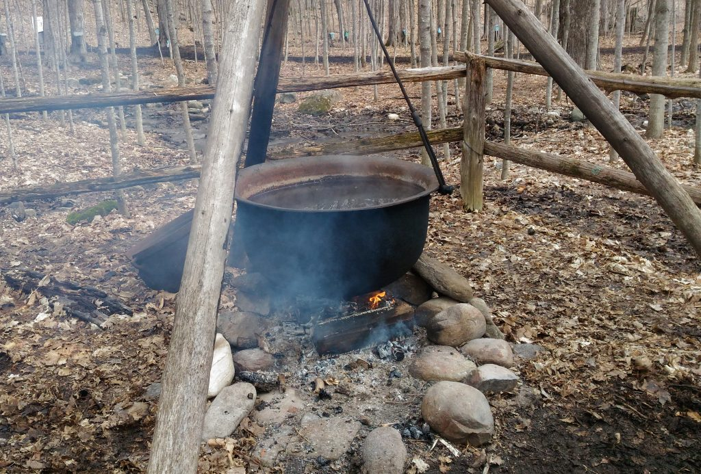 Maple Syrup Eastern Ontario