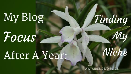Blog Focus